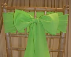 Rental store for CHAIR SASHES GREENS in  NJ
